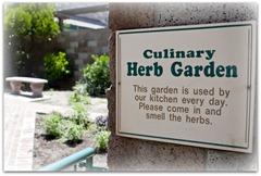 T - herb garden