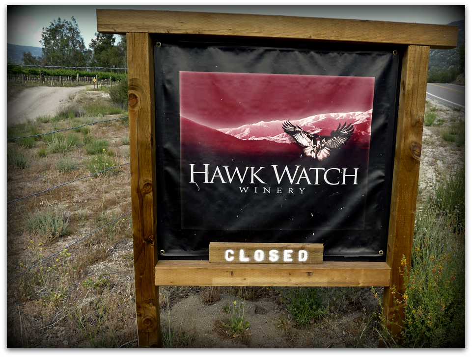 hawk-watch