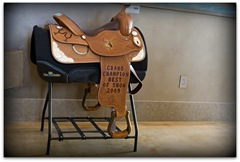 vr saddle
