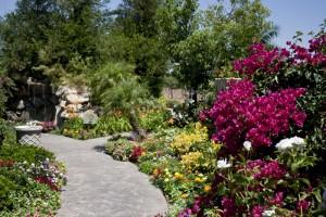 gs garden