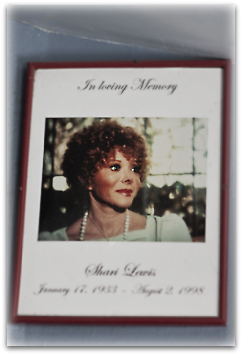 Jump For The Cause In Loving Memory Of Shari Lewis