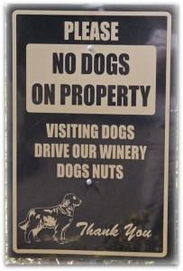 no dogsp