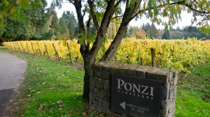 Wineormous-Ponzi-Winery in Oregon's Willamette Valley