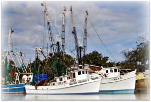 WINEormous shrimp boats in Darien, GA