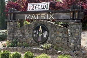 WINEormous at Matrix Winery