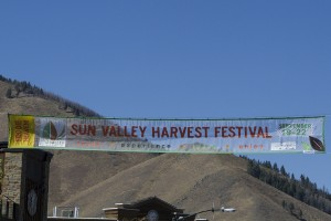 WINEormous at Sun Valley Harvest Festival