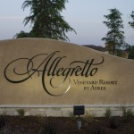 WINEormous at Allegretto