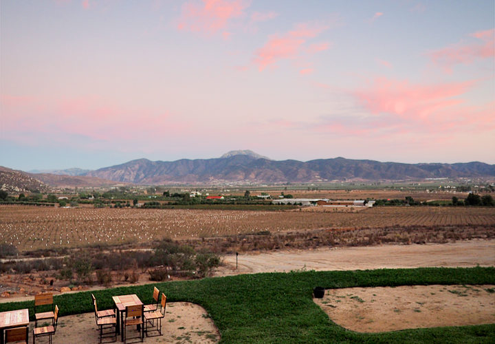WINEormous at Decantos Winery Sunset View