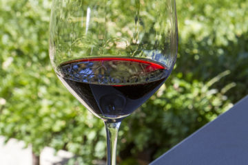 WINEormous Temecula Wine Tours at Venge Vineyards