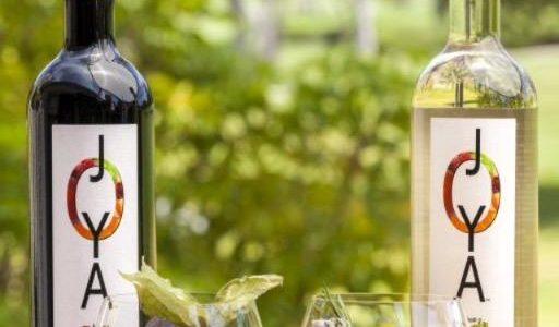 WINEormous with JOYA bottles