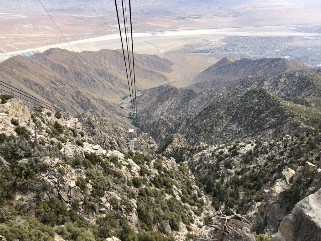 Temecula winery tour Palm Springs aerial tram